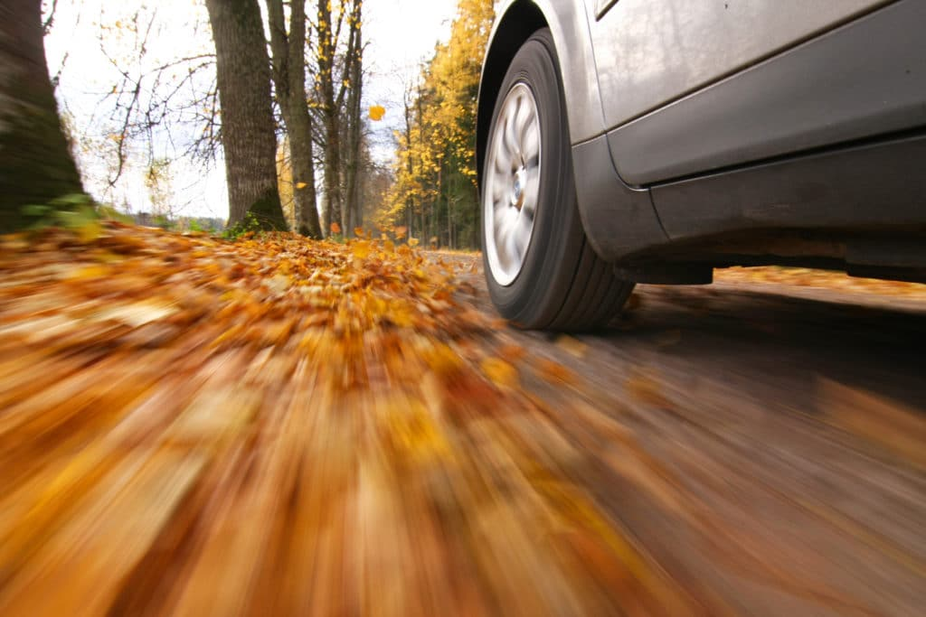 car driving through fall leaves