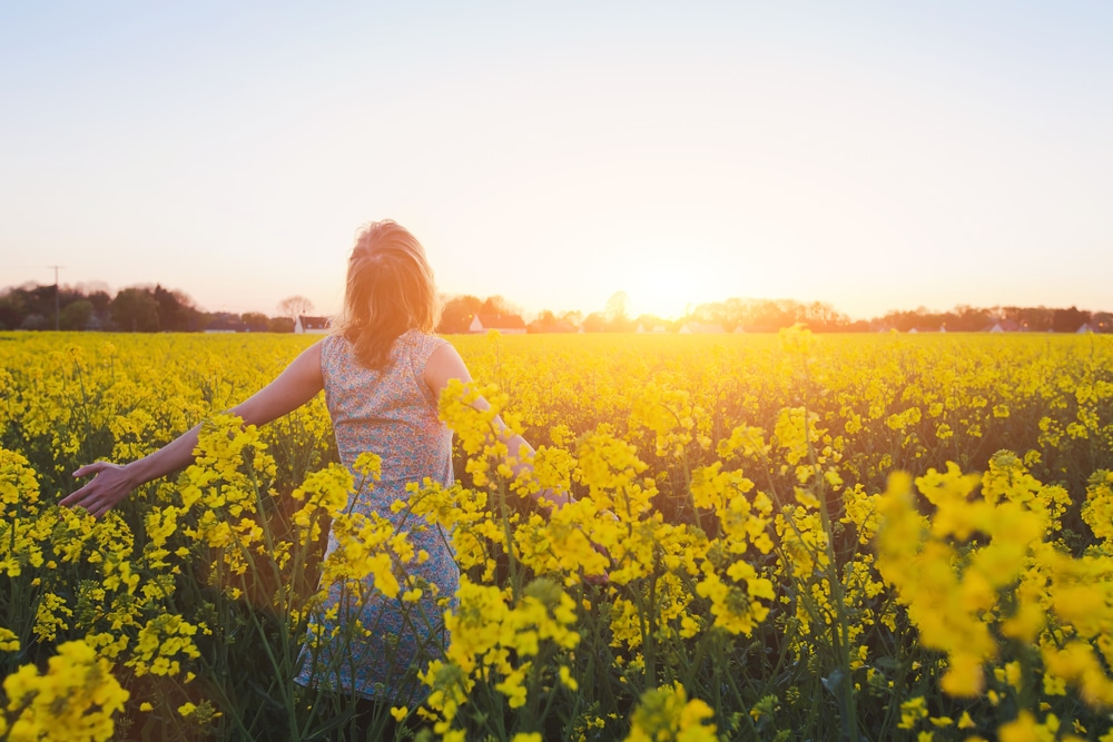 Happy,Young,Woman,Enjoying,Summer,In,Yellow,Field,At,Sunset